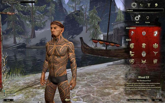 Создание персонажа в The Elder Scrolls Online
